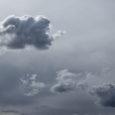 Majlinda Hoxha, Gray Skies copy