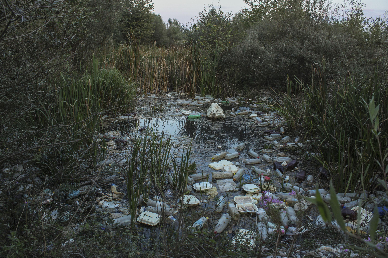 Biodiverzitet narušen vađenjem šljunka i odlaganjem otpada u bare na rijeci Bistrici u Peći.