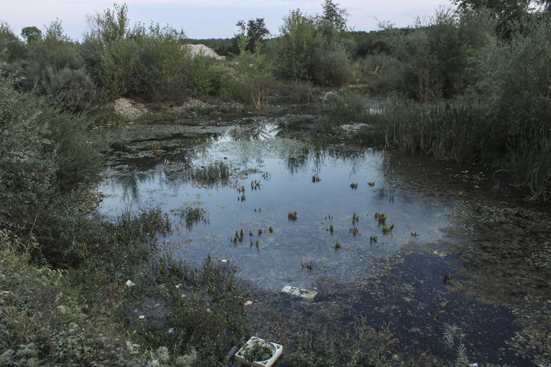 Riječne bare nastale uništavanjem riječnog korita Pećke Bistrice.